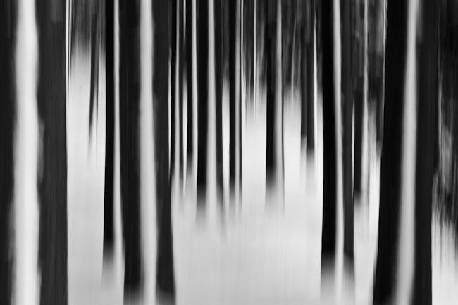Mats Nilsson's Fotoblogg